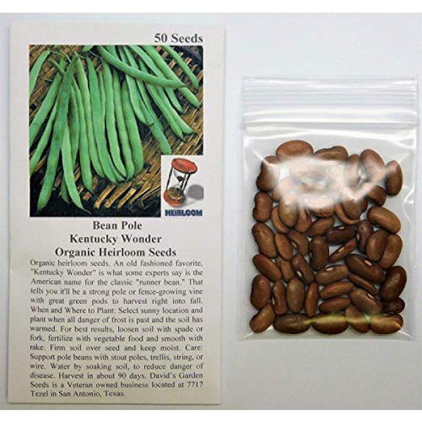 David's Garden Seeds Heirloom Seed 2 David's Garden Seeds Bean Pole Kentucky Wonder SL3544 (Green) 50 Non-GMO, Heirloom Seeds