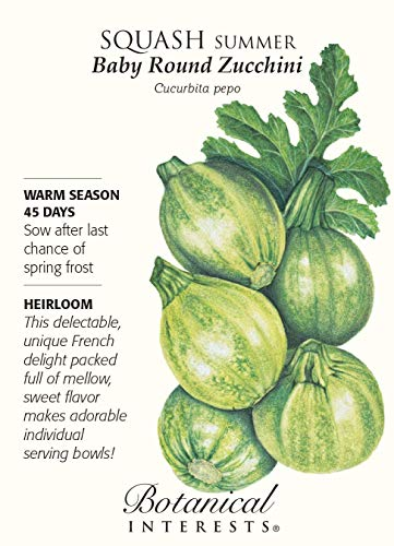 Botanical Interests  1 Baby Round Zucchini Summer Squash Seeds - 3 grams - Botanical Interests