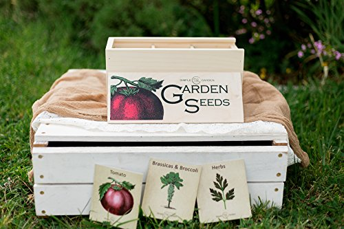 Simple Quality  2 Seed Storage Container and Organizer Box for Your Garden Seed Packets - Tall Size -11.75 L 5.1 Wide 6.5 H - Expertly Crafted in The U.S.A. with Vintage Heirloom Style Divider Cards to Organize Seeds