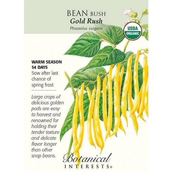 Hirts: Seed; Vegetable Organic Seed 1 Gold Rush Bush Bean Seeds - 15 Grams - Organic