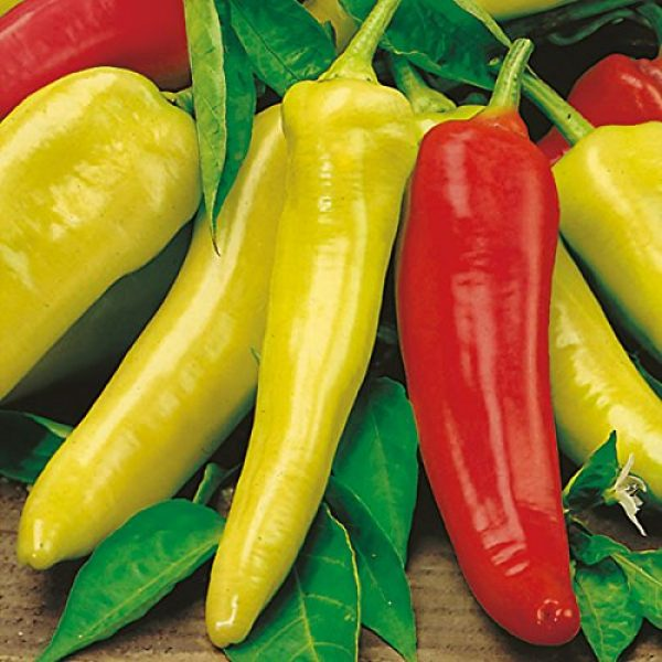 Isla's Garden Seeds Heirloom Seed 1 Hungarian Sweet Pepper Seeds, 100+ Premium Heirloom Seeds, Excellent for Fresh Eating!, (Isla's Garden Seeds), Non GMO, 85% Germination Rates, Highest Quality Seed