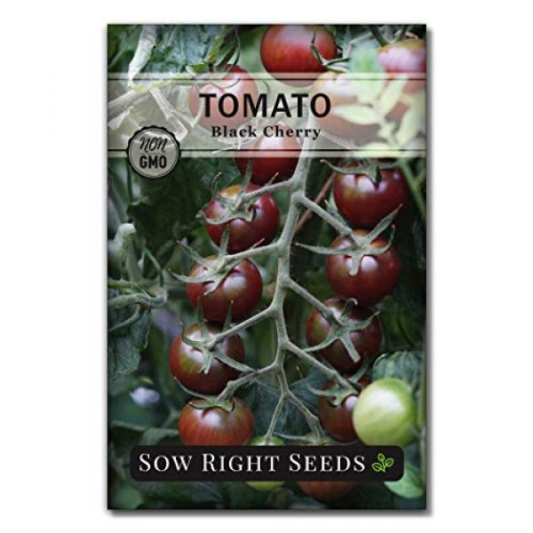Sow Right Seeds Heirloom Seed 1 Sow Right Seeds - Black Cherry Tomato Seed for Planting - Non-GMO Heirloom Packet with Instructions to Plant a Home Vegetable Garden - Great Gardening Gift (1)