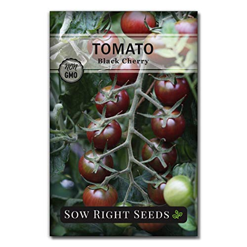 Sow Right Seeds  1 Sow Right Seeds - Black Cherry Tomato Seed for Planting - Non-GMO Heirloom Packet with Instructions to Plant a Home Vegetable Garden - Great Gardening Gift (1)