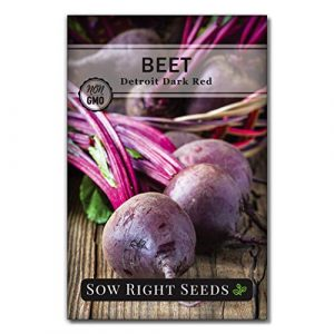 Sow Right Seeds  1 Sow Right Seeds - Detroit Dark Red Beet Seed for Planting - Non-GMO Heirloom Packet with Instructions to Plant a Home Vegetable Garden - Great Gardening Gift (1)
