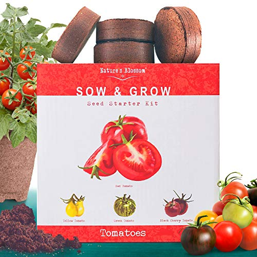 Nature's Blossom Organic Seed 1 Nature's Blossom Tomato Garden Kit. Grow 4 Types of Tomatoes from Seed. Gardening Starter Set For Growing Unusual Tomatoes; Sweet Red Tomato, Black Cherry, Yellow Pear Tomato and Green Zebra Tomatoes.