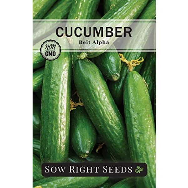 Sow Right Seeds Heirloom Seed 3 Sow Right Seeds - Cucumber Seed Collection for Planting - Armenian, Pickling, Lemon, Beit Alpha Variety Pack, Non-GMO Heirloom Seeds to Plant and Grow a Home Vegetable Garden, Great Gardening Gift