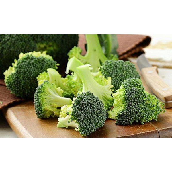 Isla's Garden Seeds Organic Seed 4 Broccoli Seeds (De Cicco), 300+ Premium Heirloom Seeds, ON SALE!, (Isla's Garden Seeds), Non Gmo Organic, 90% Germination, Highest Quality.