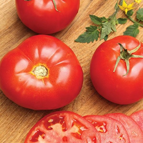 SEEDS OF CHANGE Organic Seed 2 Seeds of Change Certified Organic Seed Beefsteak Tomato