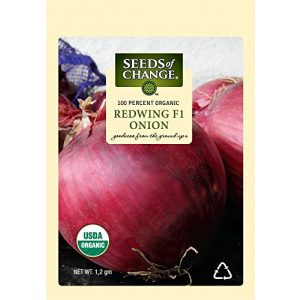 SEEDS OF CHANGE Organic Seed 1 Seeds of Change 05790 Certified Organic Seed, Redwing F1 Onion