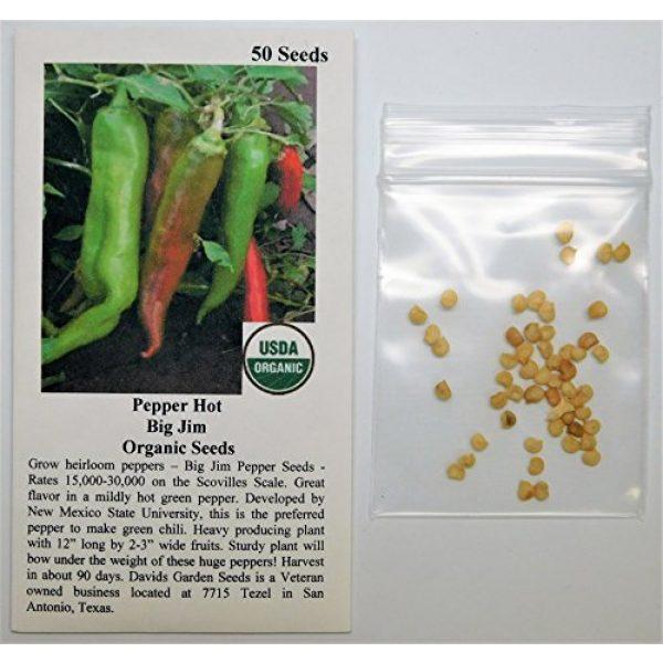 David's Garden Seeds Heirloom Seed 2 David's Garden Seeds Pepper Hot Big Jim SL1323 (Red) 50 Non-GMO, Heirloom Seeds