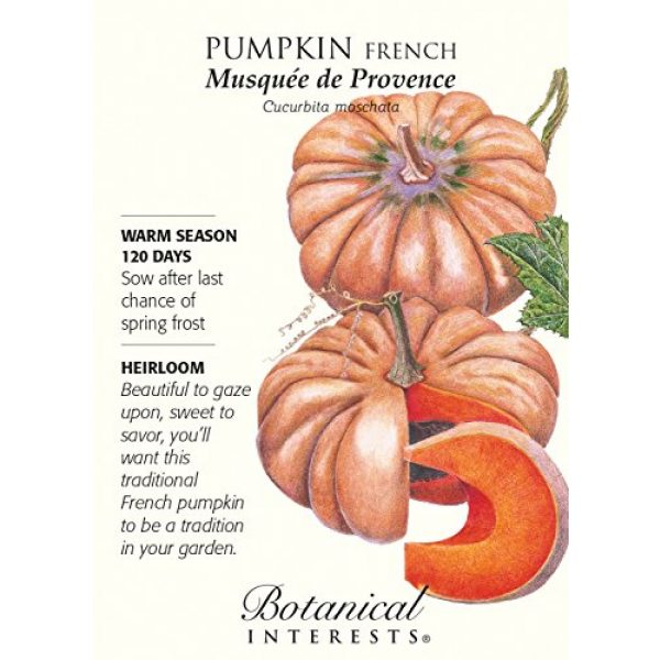 """Botanical Interests Heirloom Seed 1 French Pumpkin """"Musquee de Provence"""" Heirloom Seeds"""