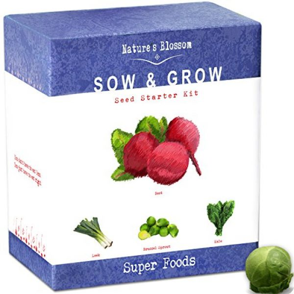 Nature's Blossom Organic Seed 6 Grow 4 of The Healthiest Vegetables from Seed - Brussel Sprouts, Kale, Beets & Leeks. Superfood Sprout Kit W/Soil, Organic Planters. Outdoor Garden Gift for Beginner Gardeners, Vegans, Vegetarians