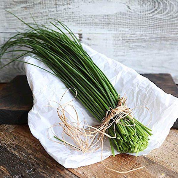Fertile Ukraine Seeds Heirloom Seed 2 Seeds Chives Onion Green Vegetable Heirloom Ukraine
