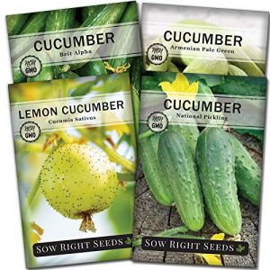 Sow Right Seeds Heirloom Seed 1 Sow Right Seeds - Cucumber Seed Collection for Planting - Armenian, Pickling, Lemon, Beit Alpha Variety Pack, Non-GMO Heirloom Seeds to Plant and Grow a Home Vegetable Garden, Great Gardening Gift
