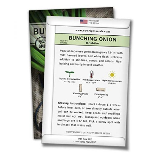 Sow Right Seeds Heirloom Seed 2 Sow Right Seeds - Heshiko Bunching Japanese Green Onion Seeds for Planting - Non-GMO Heirloom Seeds with Instructions to Plant and Grow a Kitchen Garden, Indoor or Outdoor; Great Gardening Gift