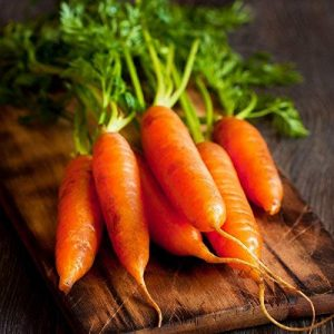 Isla's Garden Seeds Heirloom Seed 1 Red Cored Chantenay Carrot Seeds, 1000+ Premium Heirloom Seeds, Gardeners Choice!, (Isla's Garden Seeds), 85-90% Germination Rates, Non GMO, Highest Quality.