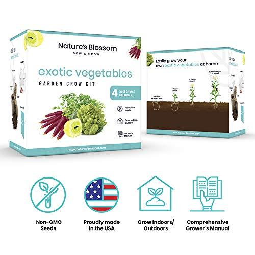 Nature's Blossom Organic Seed 4 Nature's Blossom Exotic Vegetable Garden Kit - Easily Grow 4 Funky Vegetables from Seeds. Educational STEM Gardening Gift Set for Kids, Men and Women. Full Beginners Starter Kit.