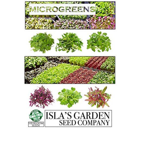 Isla's Garden Seeds Heirloom Seed 4 Microgreens Rambo Radish Seeds, Fantastic Addition to Salads! 200+ Premium Heirloom Seeds, Perfect for Your Home Garden!,(Isla's Garden Seeds), Non GMO, 90% Germination,