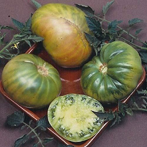 David's Garden Seeds  1 David's Garden Seeds Tomato Beefsteak Aunt Ruby's German Green SL0784 (Green) 25 Non-GMO