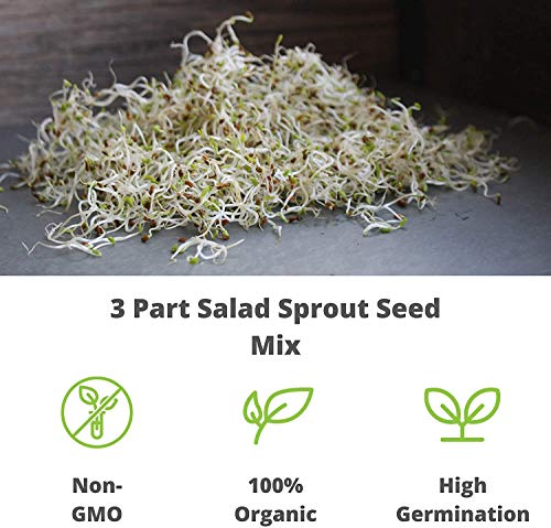 Food Storage or Salad Sprouts