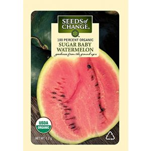 SEEDS OF CHANGE Organic Seed 1 Seeds of Change Certified Organic Sugar Baby Watermelon