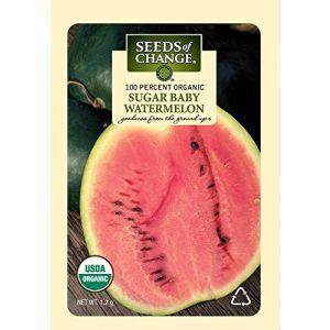 SEEDS OF CHANGE Organic Seed 1 Seeds of Change Certified Organic Sugar Baby Watermelon