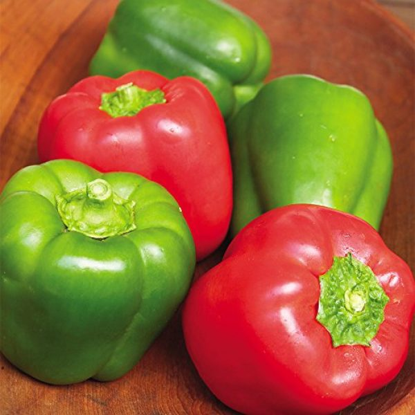 SEEDS OF CHANGE Organic Seed 4 Seeds of Change Certified Organic Cal Wonder Red Bell Pepper
