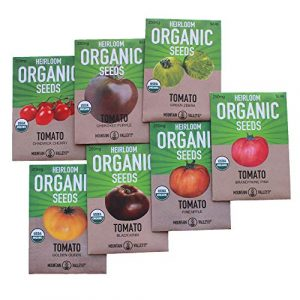 Mountain Valley Seed Company Organic Seed 1 7 Varieties Non-GMO Organic Heirloom Tomato Seeds - Chadwick Cherry Tomato Seeds, Green Zebra, Black Krim Tomato Seeds, Golden Queen, Cherokee Purple Seeds, Brandywine Pink Tomato Seeds, Pineapple