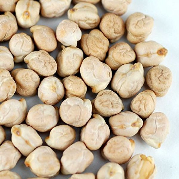Handy Pantry Organic Seed 2 Dried Garbanzo Beans- Organic Sprouting Seeds - 5 Lbs - Handy Pantry Brand - Dry Garbonzo Bean / Seeds - For Planting, Gardening, Hummus, Cooking, Food Storage, Sprouts