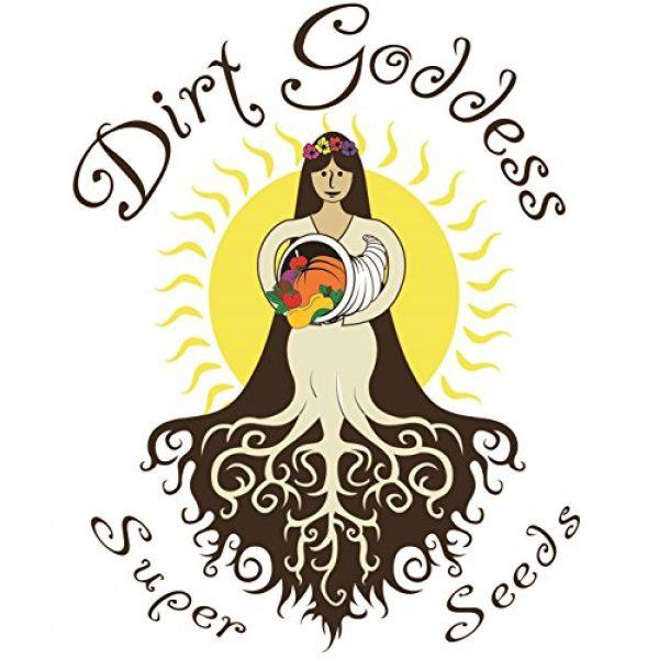 Dirt Goddess Super Seeds Organic Seed 5 Bulk Organic Mesclun Mix Seeds (1 LB) 425,000 Seeds