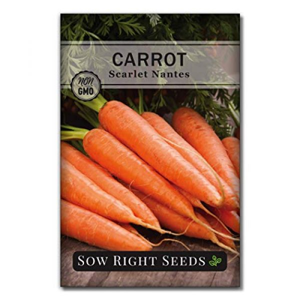 Sow Right Seeds Heirloom Seed 1 Sow Right Seeds - Scarlet Nantes Carrot Seed for Planting - Non-GMO Heirloom Packet with Instructions to Plant a Home Vegetable Garden, Indoors or Outdoor; Great Gardening Gift (1)