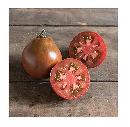 David's Garden Seeds  1 David's Garden Seeds Tomato Slicing Japanese Black Trifele SL6676 (Red) 50 Non-GMO