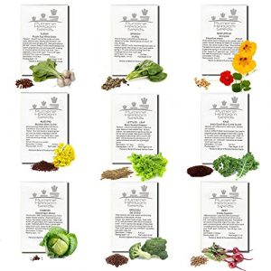 Pumene Heirloom Seeds  1 HEIRLOOM VEGETABLE SEEDS AMERICAN GROWN Variety Non GMO Vegetables Seeds. Super Germination Easy to Grow