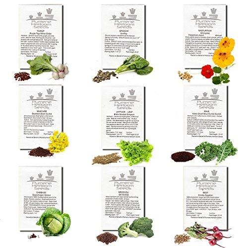 Pumene Heirloom Seeds Organic Seed 1 HEIRLOOM VEGETABLE SEEDS AMERICAN GROWN Variety Non GMO Vegetables Seeds. Super Germination Easy to Grow, Open Pollinated, Non Hybrid Vegetable Heirloomseeds for Planting in Organic Vegetable Garden