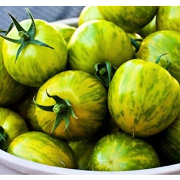 Isla's Garden Seeds Heirloom Seed 4 Green Zebra Tomato Seeds, 200+ Premium Heirloom Seeds, Yummy Delicious! Fun Addition to Your Home Garden!, (Isla's Garden Seeds), Non GMO, 90% Germination Rates, Highest Quality Seeds