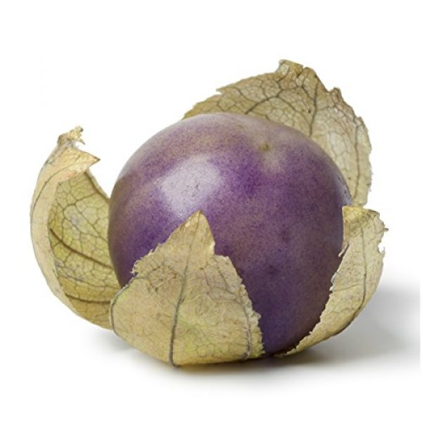 Seed Needs Heirloom Seed 2 Seed Needs, Purple Milpa Tomatillo (Physalis ixocarpa) Twin Pack of 50 Seeds Each Non-GMO