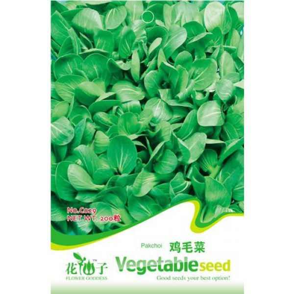 Business sasha Organic Seed 2 Each Pack 200+ Seeds Heirloom Healthy Organic Vegetable Chinese Cabbage Pakchoi Seeds (3)