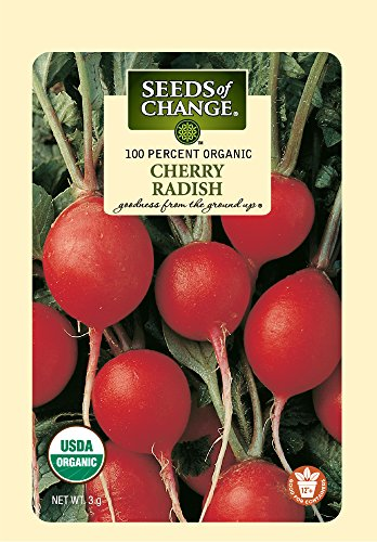 SEEDS OF CHANGE  1 Seeds of Change Certified Organic Cherry Belle Radish