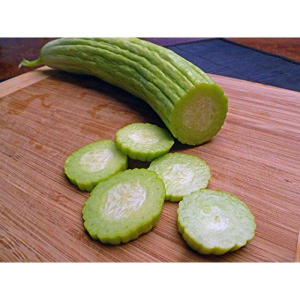 SeedsUA Heirloom Seed 6 Seeds Rare Cucumber Armenian Pickling Vegetable Heirloom Ukraine