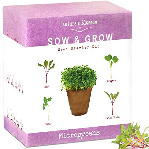 Nature's Blossom Organic Seed 6 Nature's Blossom Microgreen Vegetables Sprouting Kit - Beginner Gardeners Seed Starter Set to Grow Basil, beets, Chards and Arugula from Seeds. Grow from Seed to your Plate in 10 Days.
