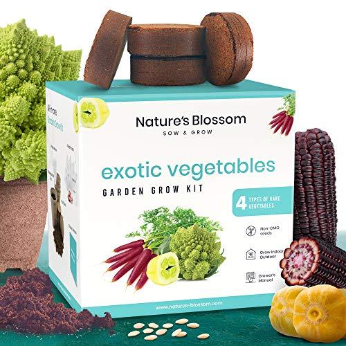 Nature's Blossom Organic Seed 7 Nature's Blossom Exotic Vegetable Garden Kit - Easily Grow 4 Funky Vegetables from Seeds. Educational STEM Gardening Gift Set for Kids, Men and Women. Full Beginners Starter Kit.