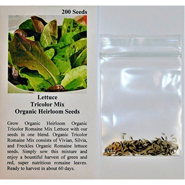 David's Garden Seeds Organic Seed 2 David's Garden Seeds Lettuce Mix Tricolor OU3434 (Multi) 200 Non-GMO, Organic, Heirloom Seeds