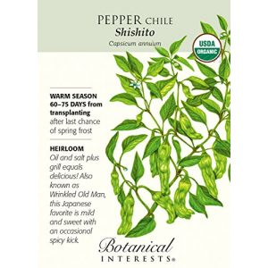Botanical Interests  1 Organic Shishito Chile Pepper - 25 Seeds
