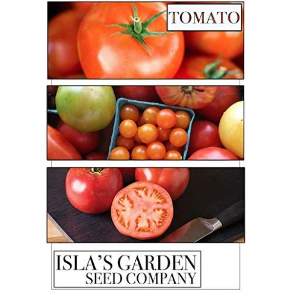 Isla's Garden Seeds Organic Seed 7 Large Red Cherry Tomato Seeds, 500+ Premium Heirloom Seeds, Fantastic Addition of Flavor to Your Home Garden!, (Isla's Garden Seeds), 90% Germination Rates, Non GMO Organic, Highest Quality