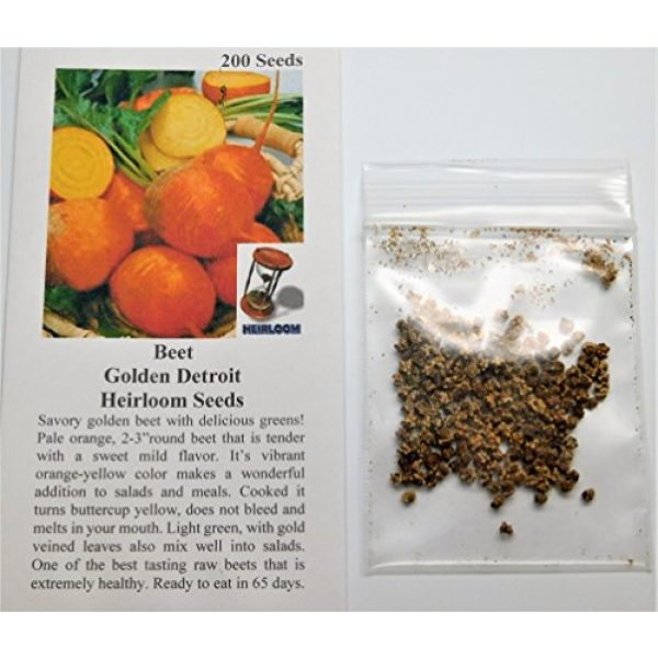 David's Garden Seeds Heirloom Seed 2 David's Garden Seeds Beet Detroit Gold SL0091 (Gold) 200 Non-GMO, Heirloom Seeds