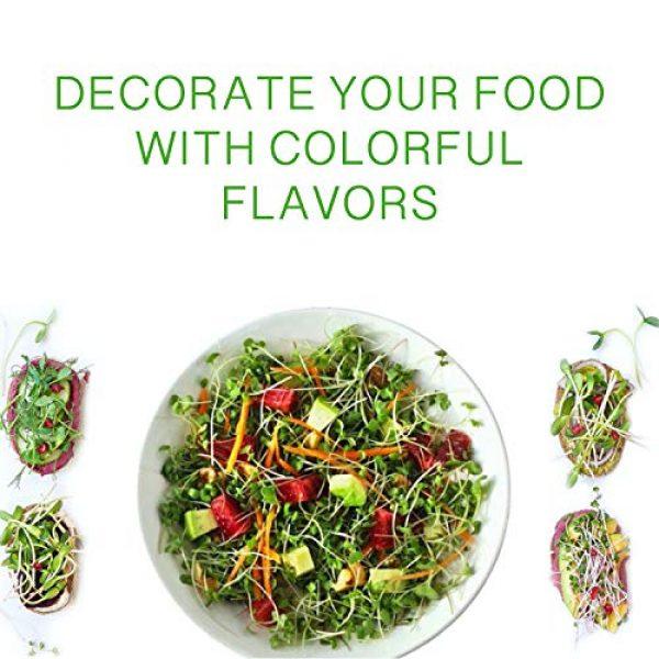 ECOVOO Organic Seed 3 Organic Microgreen Seeds Salad Mix - Non GMO Microgreen Seeds, Sunflower, Mustard, Radish, Red Amaranth, Broccoli - Seeds for Microgreens - Microgreen Organic Seeds - Microgreen Seeds for Sprouting
