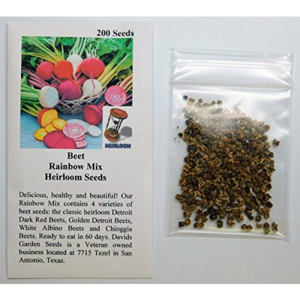 David's Garden Seeds Heirloom Seed 2 David's Garden Seeds Beet Rainbow Mix SL1193 (Multi) 200 Non-GMO, Heirloom Seeds