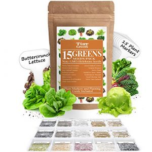 Tiny Greens  1 15 Heirloom Lettuce & Leafy Vegetable Seeds | 4000+ Seeds | Non GMO Bulk Lettuce Seeds for Planting - Kale