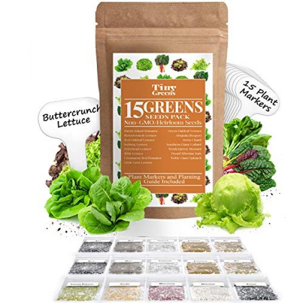 Tiny Greens Heirloom Seed 1 15 Heirloom Lettuce & Leafy Vegetable Seeds | 4000+ Seeds | Non GMO Bulk Lettuce Seeds for Planting - Kale, Spinach, Arugula, Oak, Romaine, Iceberg, Butter | Hydroponic, Home Garden, Indoor Outdoor