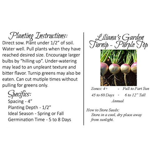 Liliana's Garden Heirloom Seed 2 Liliana's Garden Turnip Seeds - Purple Top, White Globe - Heirloom